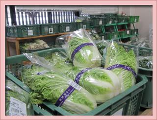 旬のお野菜を是非ご賞味ください。width=