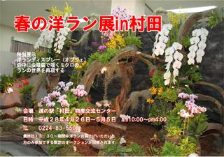 春の洋らん展in村田