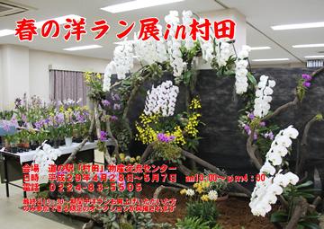 春の洋ラン展in村田