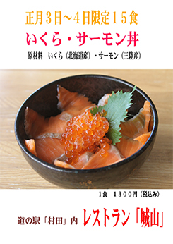 いくら・サーモン丼